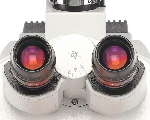 _DM4-P_optics